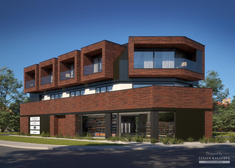 Projekt domu LK&1613