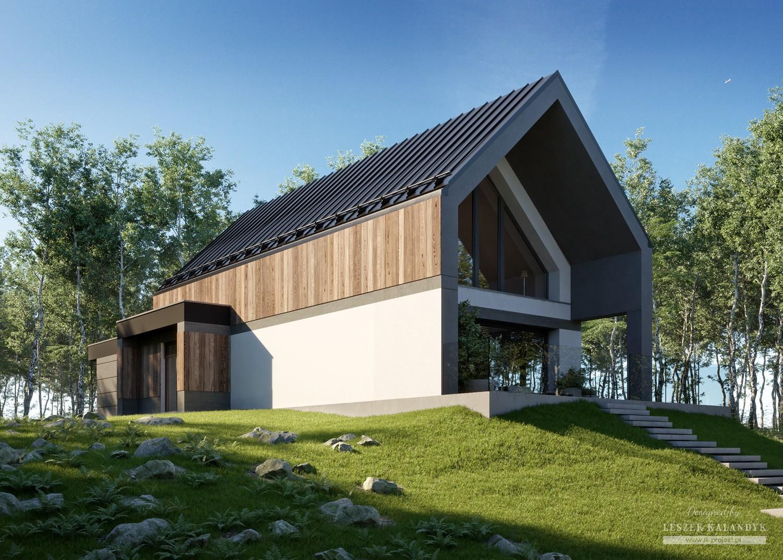 Проект дома LK&1692