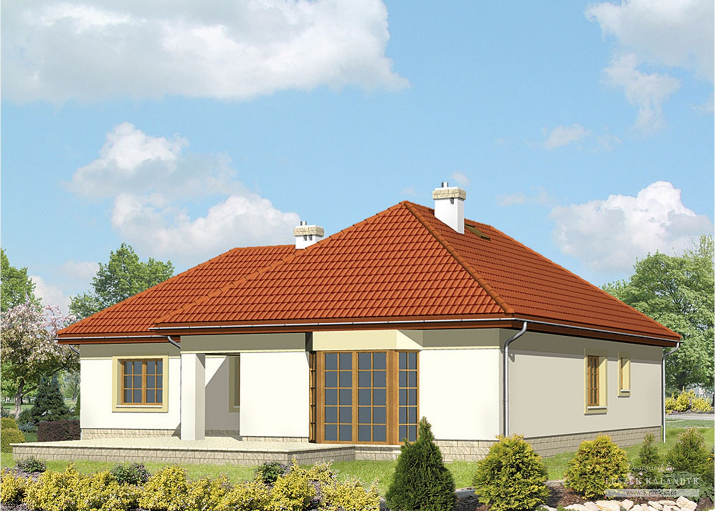 Projekt domu LK&296