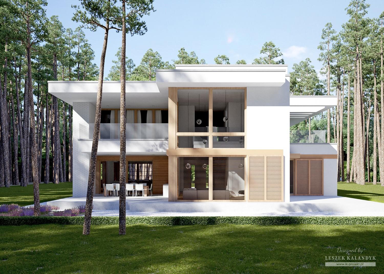 Projekt domu LK&1229