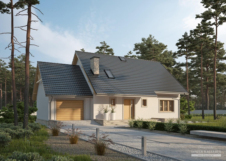 Projekt domu LK&838